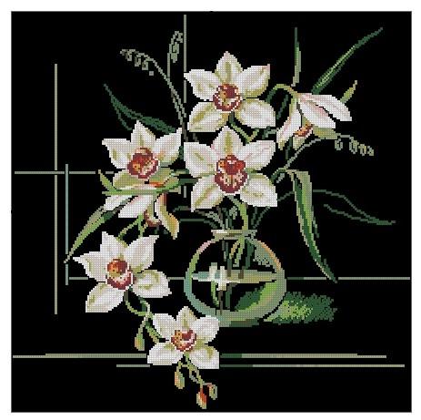 купить редкие комнатные цветы в семенах